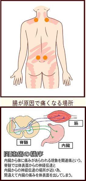 痛み 胃 の もたれ 背中