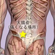腸が原因の腰痛の場所